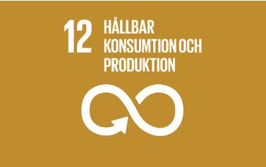Mål 12_ hållbar konsumtion och produktion