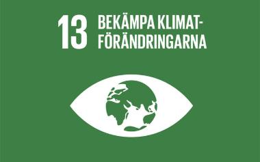 Mål 13_ bekämpa klimatförändringarna