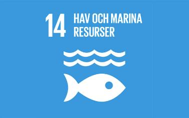Mål 14_ hav och marina resurser