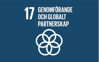 Mål 17_ genomförande och globalt partnerskap