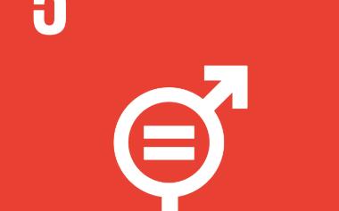 Mål 5_ jämställdhet